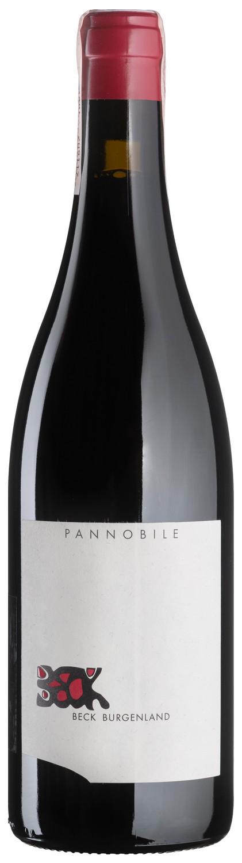 Pannobile 2015