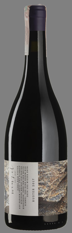 Pinot Noir Ruster 2017